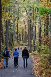 Old Rag Hiking Trail